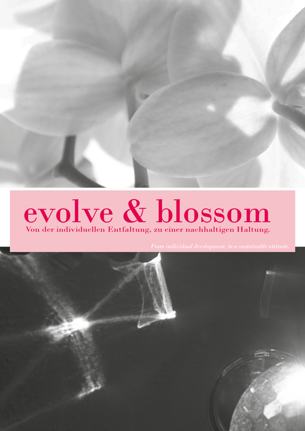 home_evolve&blossom
